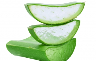natural-acne-treatment-aloe-vera